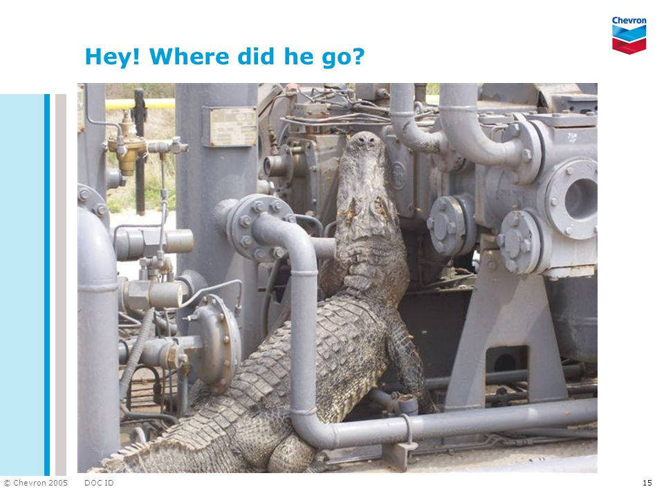 DOC ID © Chevron 2005 15 Hey! Where did he go