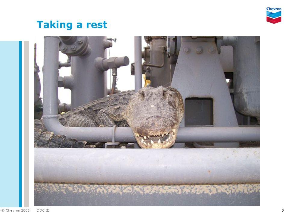 DOC ID © Chevron 2005 5 Taking a rest