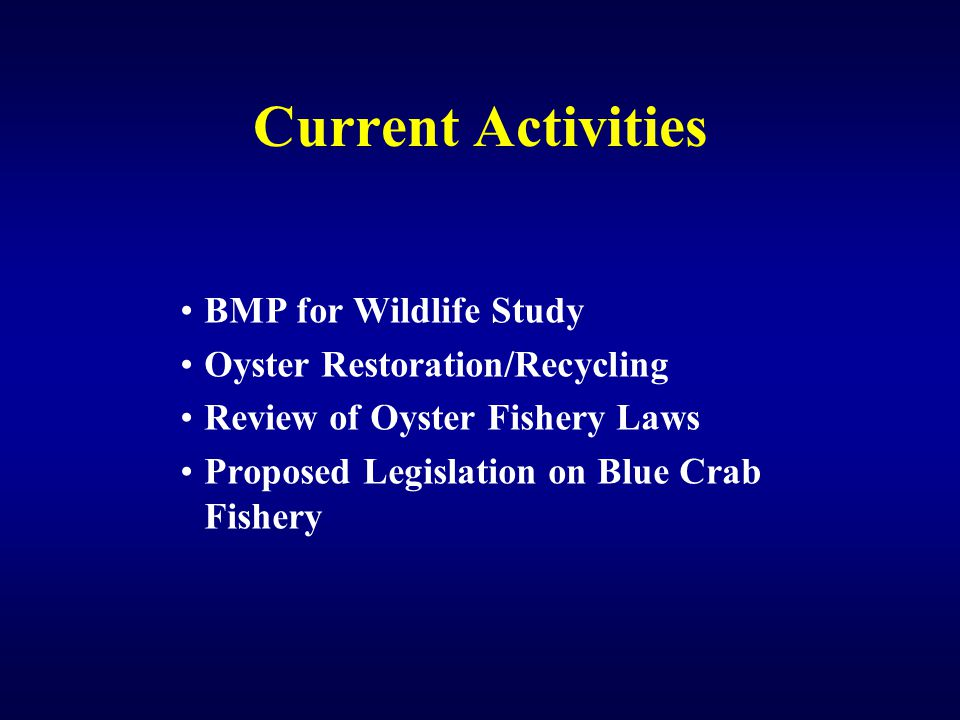 Current Activities BMP for Wildlife Study Oyster Restoration/Recycling Review of Oyster Fishery Laws Proposed Legislation on Blue Crab Fishery