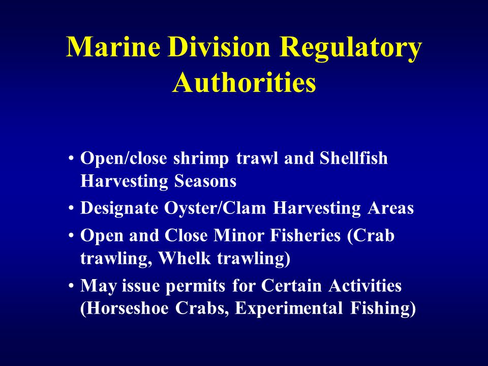 Marine Division Regulatory Authorities Open/close shrimp trawl and Shellfish Harvesting Seasons Designate Oyster/Clam Harvesting Areas Open and Close Minor Fisheries (Crab trawling, Whelk trawling) May issue permits for Certain Activities (Horseshoe Crabs, Experimental Fishing)