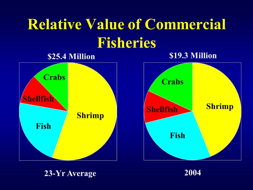 Relative Value of Commercial Fisheries Shellfish Crabs Shrimp Fish Crabs Shellfish 23-Yr Average 2004 $25.4 Million $19.3 Million