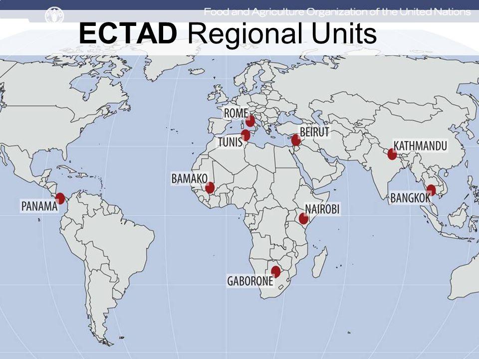 ECTAD Regional Units