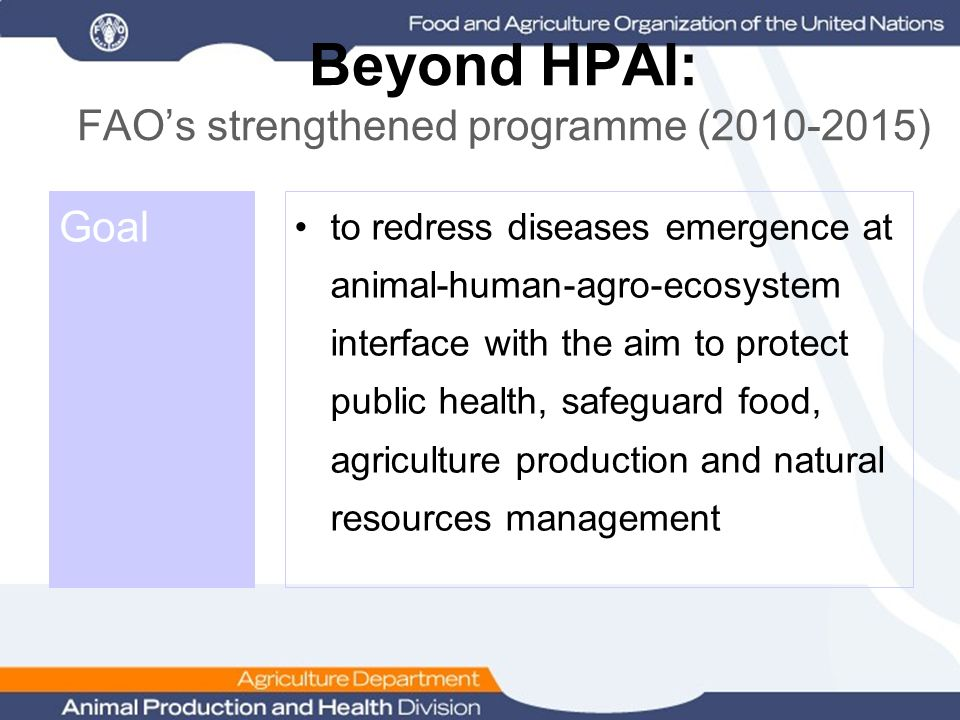 Beyond HPAI: FAO's strengthened programme (2010-2015) Goal to redress diseases emergence at animal-human-agro-ecosystem interface with the aim to prot