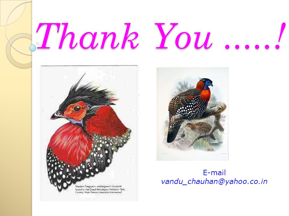 Thank You.....! E-mail vandu_chauhan@yahoo.co.in