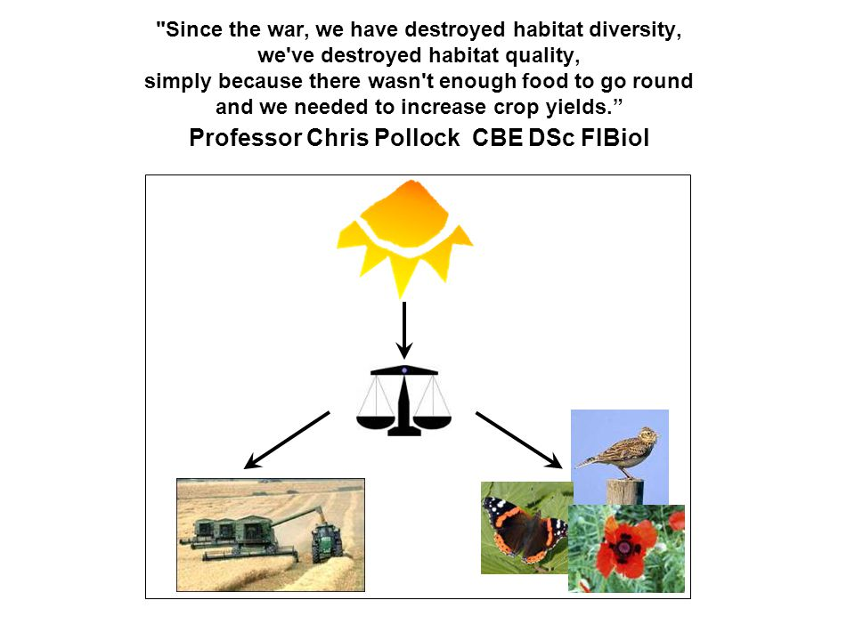 Since the war, we have destroyed habitat diversity, we ve destroyed habitat quality, simply because there wasn t enough food to go round and we needed to increase crop yields. Professor Chris Pollock CBE DSc FIBiol
