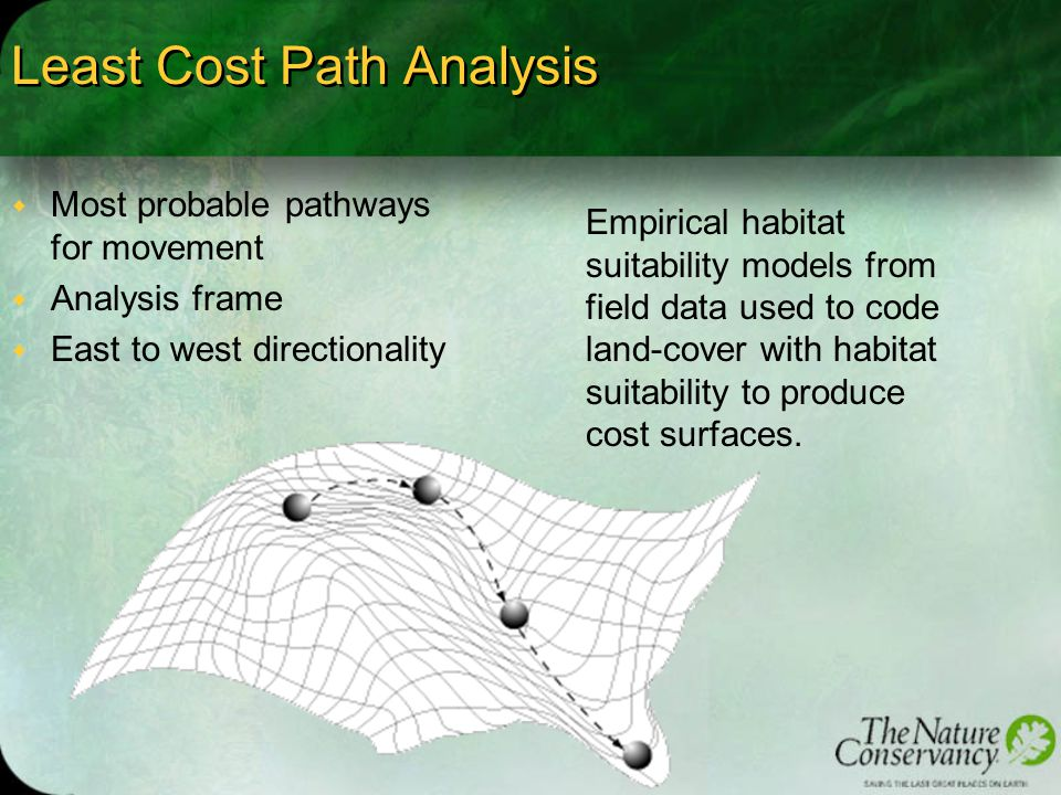 Least Cost Path Analysis w Most probable pathways for movement w Analysis frame w East to west directionality Empirical habitat suitability models from field data used to code land-cover with habitat suitability to produce cost surfaces.