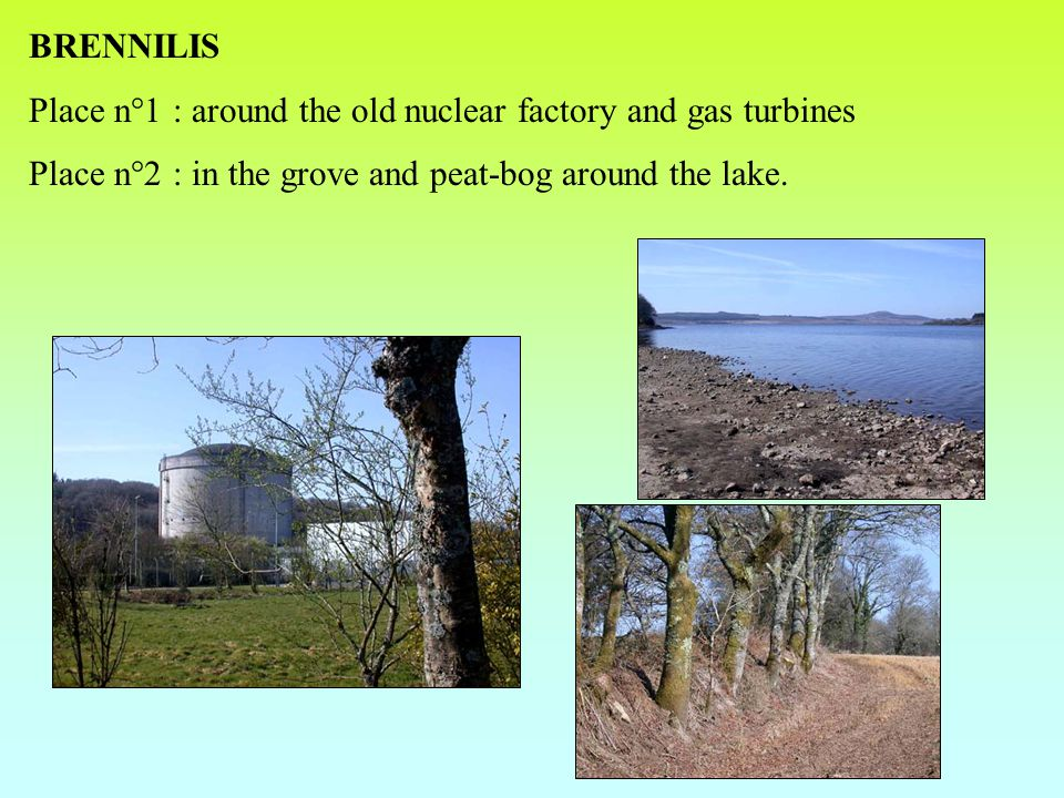BRENNILIS Place n°1 : around the old nuclear factory and gas turbines Place n°2 : in the grove and peat-bog around the lake.