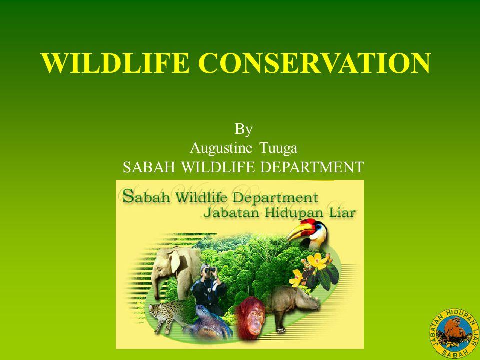 WILDLIFE CONSERVATION By Augustine Tuuga SABAH WILDLIFE DEPARTMENT