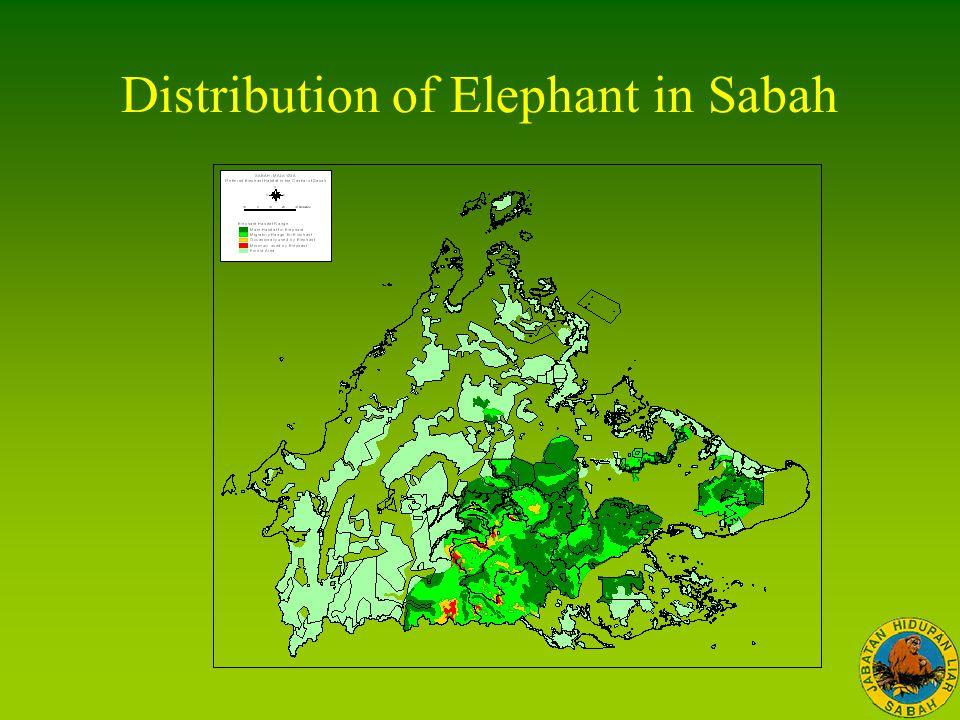 Distribution of Elephant in Sabah