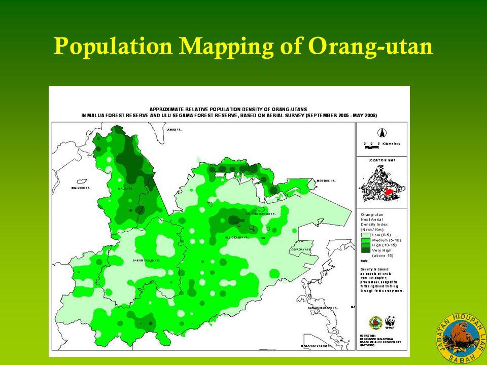 Population Mapping of Orang-utan