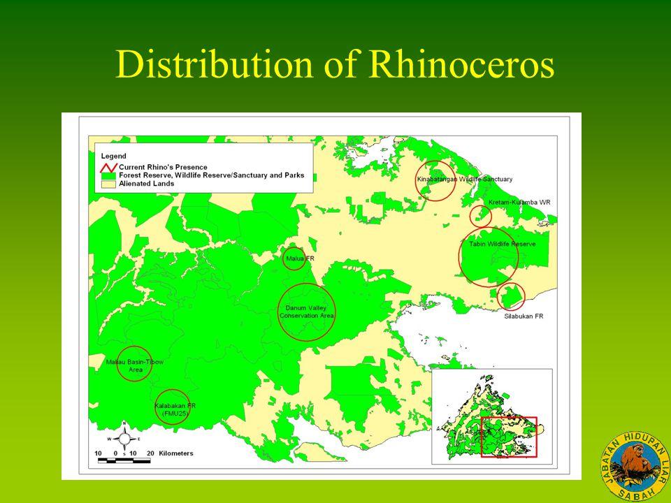 Distribution of Rhinoceros