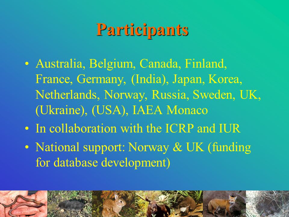 Participants Australia, Belgium, Canada, Finland, France, Germany, (India), Japan, Korea, Netherlands, Norway, Russia, Sweden, UK, (Ukraine), (USA), IAEA Monaco In collaboration with the ICRP and IUR National support: Norway & UK (funding for database development)