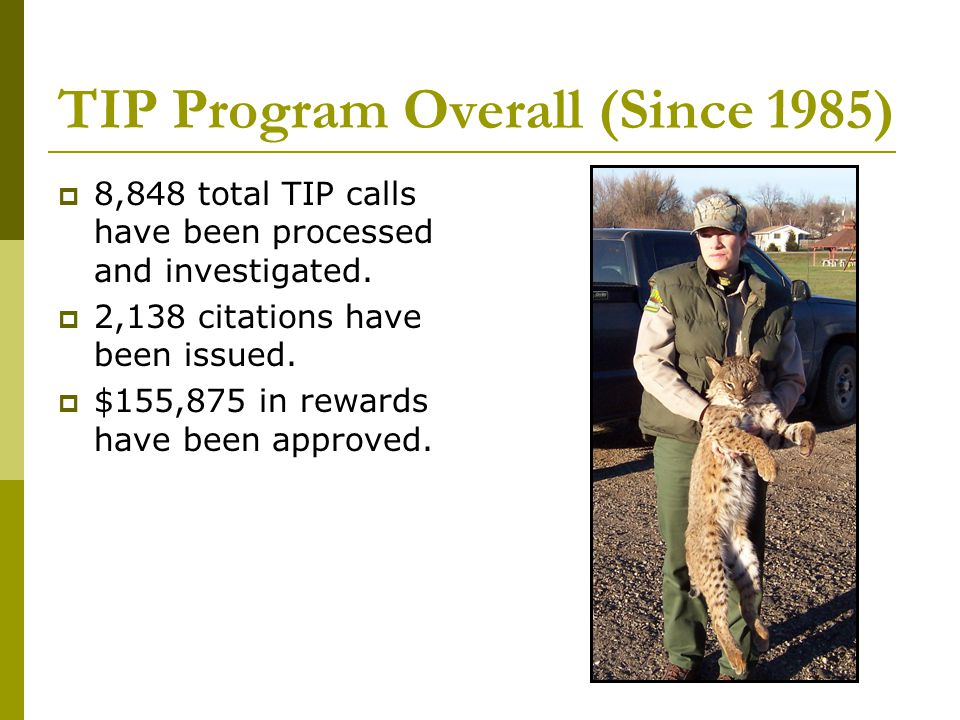 TIP Program Overall (Since 1985)  8,848 total TIP calls have been processed and investigated.