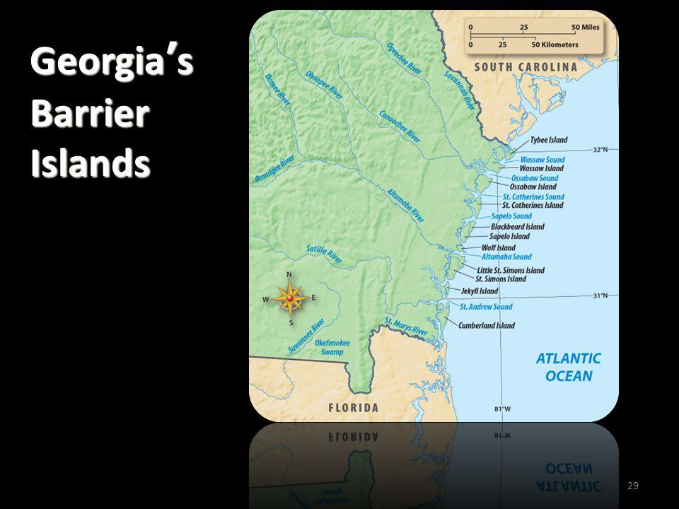 Georgia's Barrier Islands 29