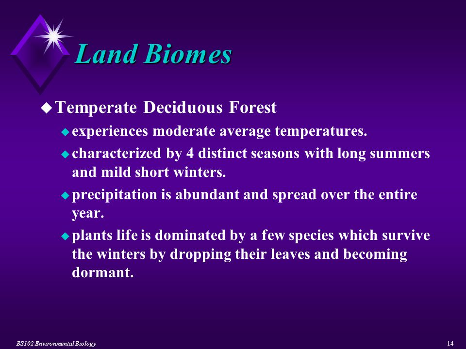 BS102 Environmental Biology14 Land Biomes u Temperate Deciduous Forest u experiences moderate average temperatures. u characterized by 4 distinct seas