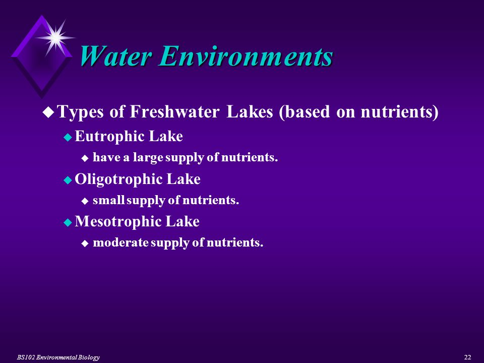 BS102 Environmental Biology22 Water Environments u Types of Freshwater Lakes (based on nutrients) u Eutrophic Lake u have a large supply of nutrients.