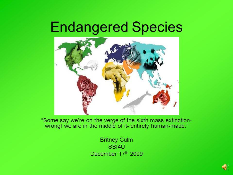 Endangered Species Some say we're on the verge of the sixth mass extinction- wrong.