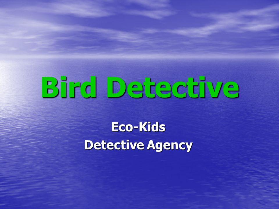 Bird Detective Eco-Kids Detective Agency