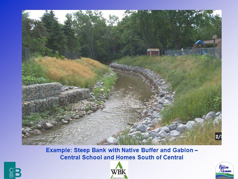 9 Living with Streams & Ponds Drainage Flood Conveyance Flood Storage Habitat Amenity