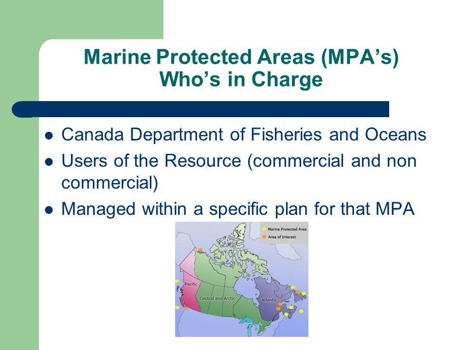 Marine Protected Areas (MPA's) Who's in Charge Canada Department of Fisheries and Oceans Users of the Resource (commercial and non commercial) Managed within a specific plan for that MPA