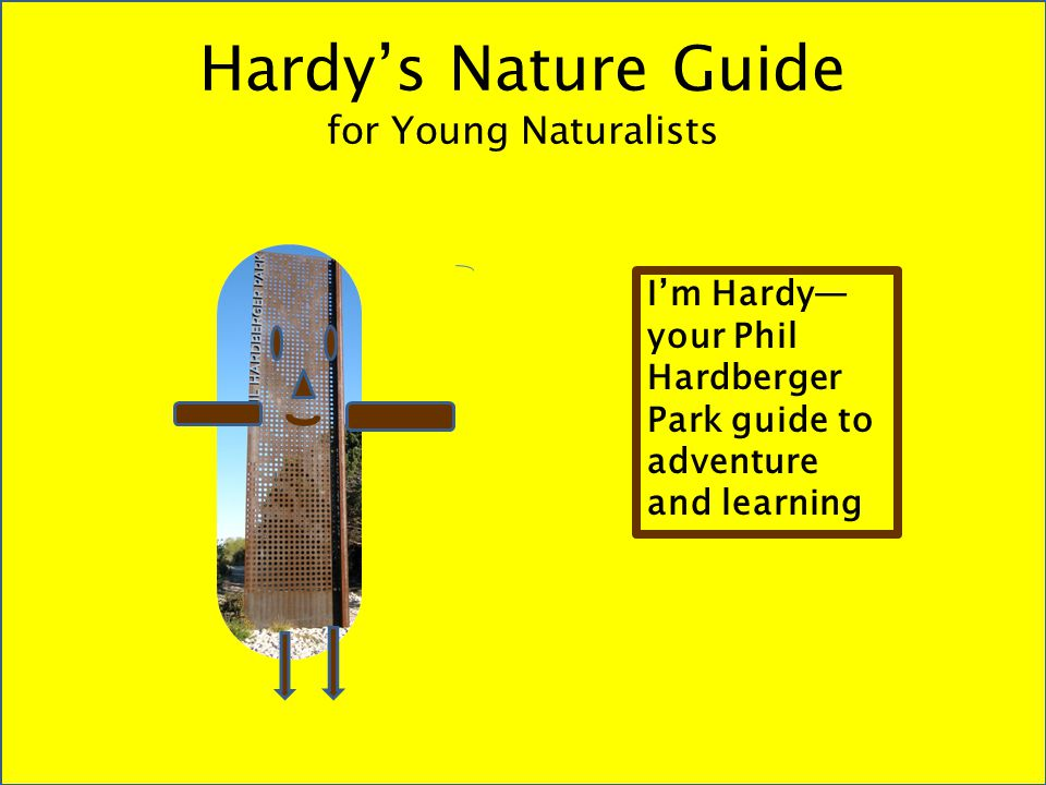 Hardy's Nature Guide for Young Naturalists I'm Hardy— your Phil Hardberger Park guide to adventure and learning