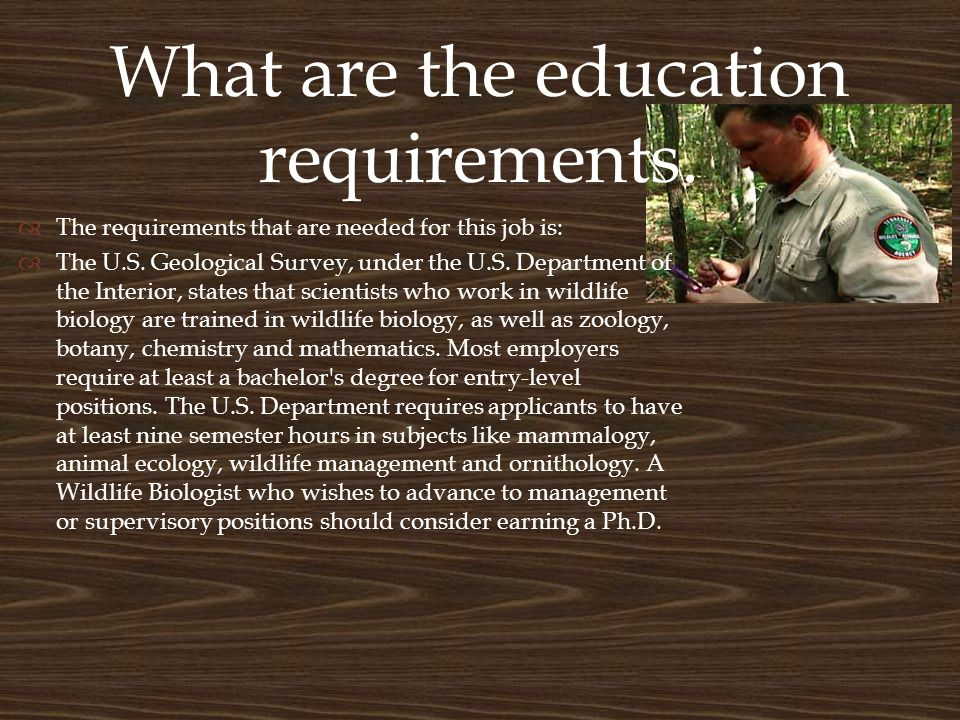 What are the education requirements.  The requirements that are needed for this job is:  The U.S.