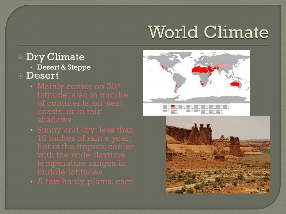  Dry Climate Desert & Steppe  Desert Mainly center on 30* latitude; also in middle of continents, on west coasts, or in rain shadows Sunny and dry; less than 10 inches of rain a year; hot in the tropics; cooler with the wide daytime temperature ranges in middle latitudes A few hardy plants, cacti