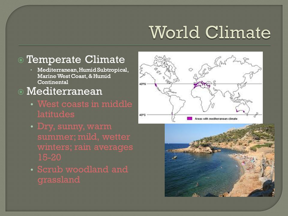  Temperate Climate Mediterranean, Humid Subtropical, Marine West Coast, & Humid Continental  Mediterranean West coasts in middle latitudes Dry, sunny, warm summer; mild, wetter winters; rain averages 15-20 Scrub woodland and grassland