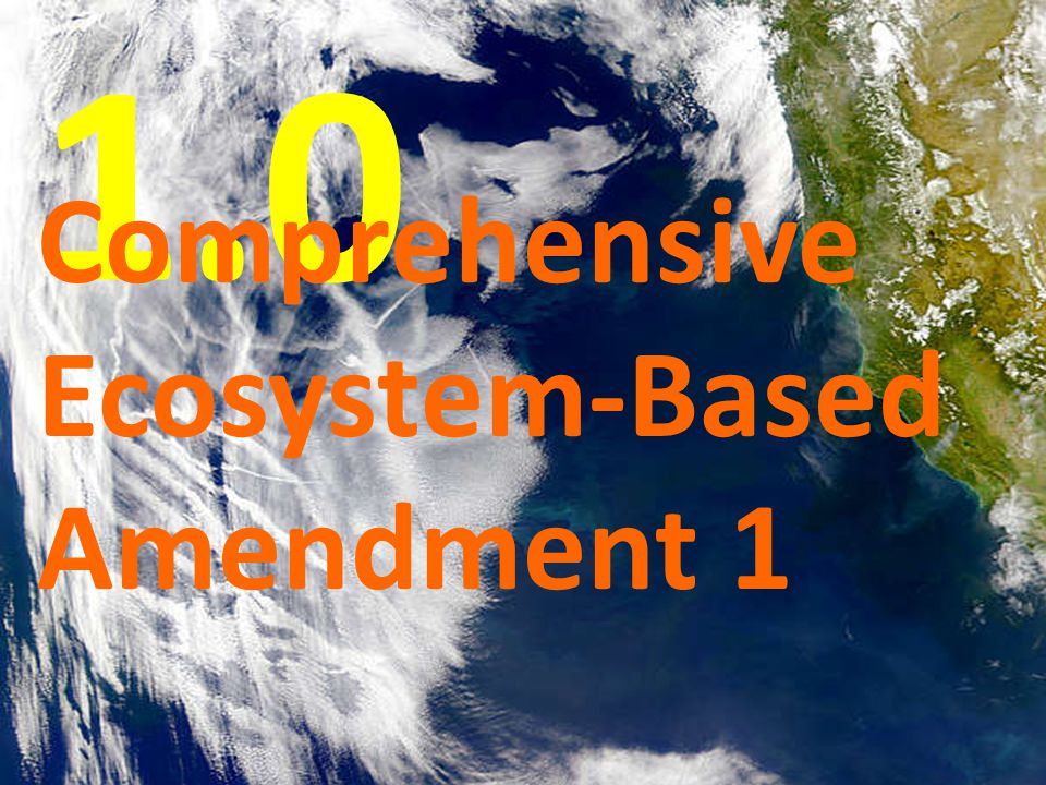 Amendment 15 to CPS FMP Amendment 25 to Groundfish FMP Amendment 3 to HMS FMP Amendment 19 to Salmon FMP 1.0 Comprehensive Ecosystem-Based Amendment 1