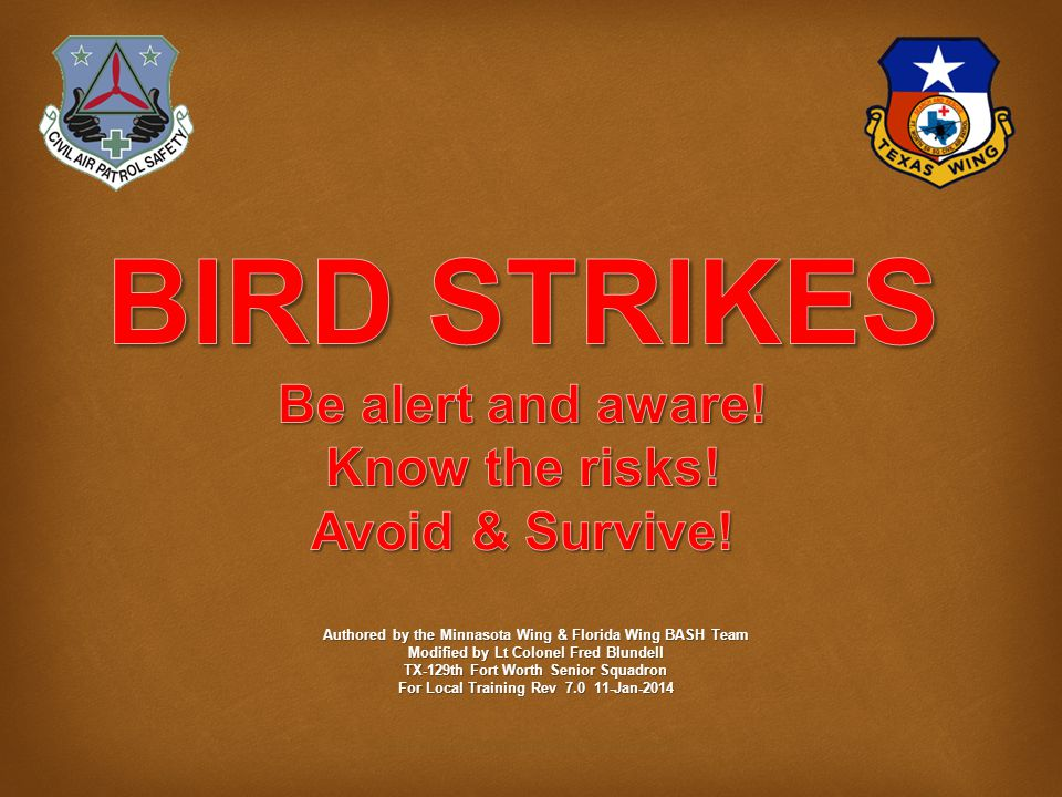 Some Myths  Myth - It is illegal to kill birds to protect aircraft.
