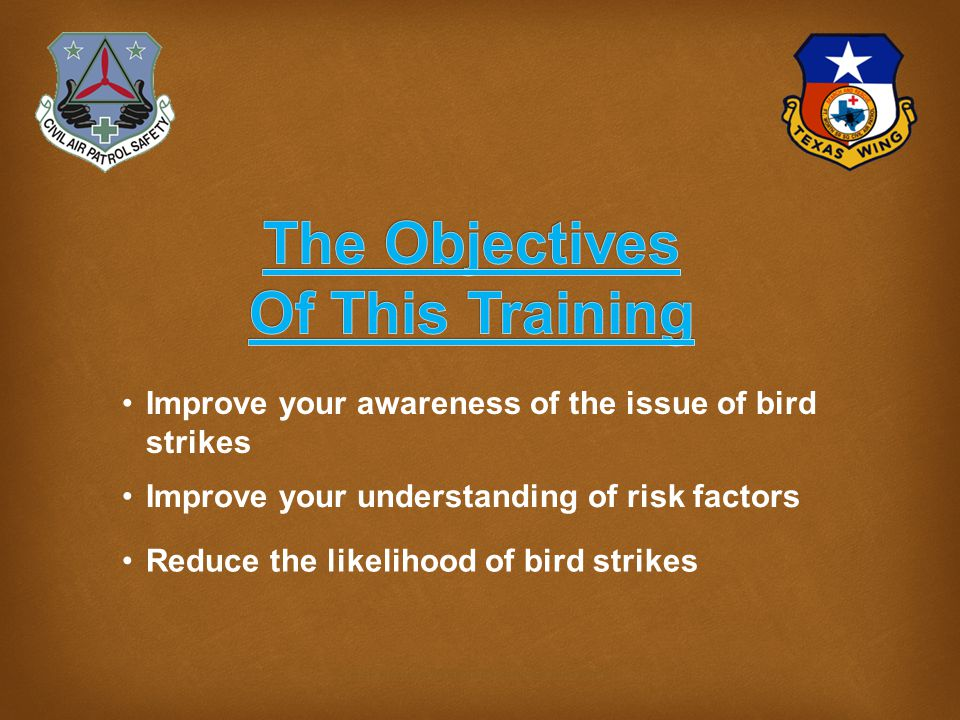What we can do  Mission Briefings must include best known info on bird hazards.