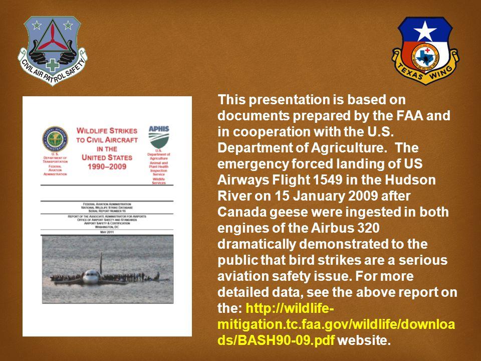 BASH Bird Aircraft Strike Hazard