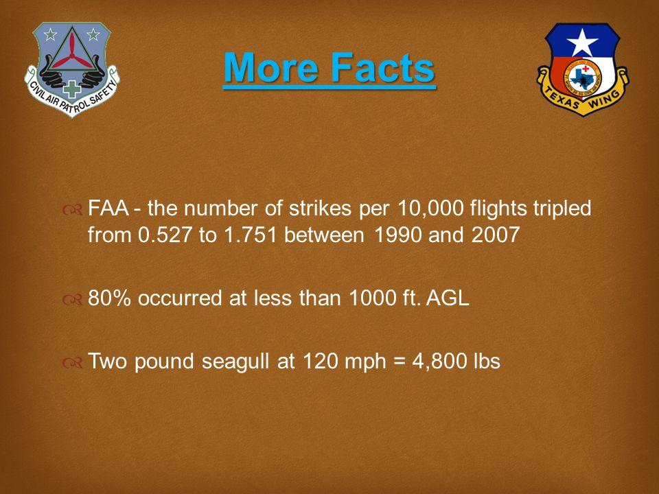 Some Myths  Myth - Bird strikes are rare.