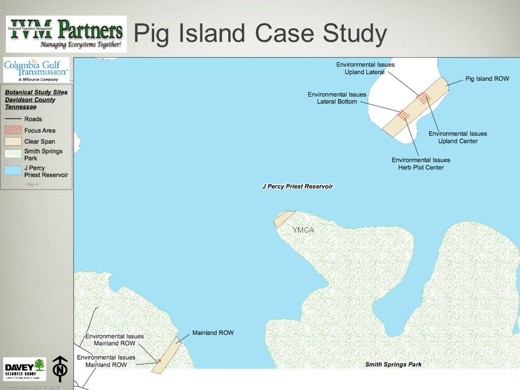 Pig Island Case Study YMCA