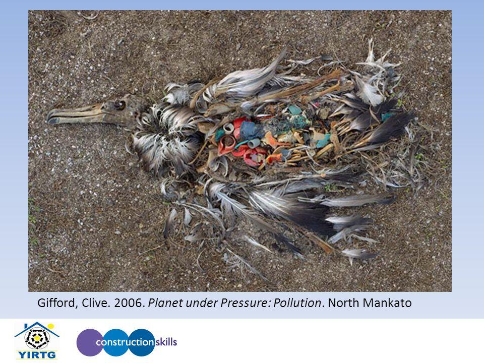 Gifford, Clive. 2006. Planet under Pressure: Pollution. North Mankato