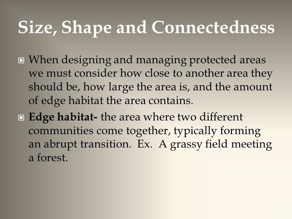Size, Shape and Connectedness When designing and managing protected areas we must consider how close to another area they should be, how large the area is, and the amount of edge habitat the area contains.
