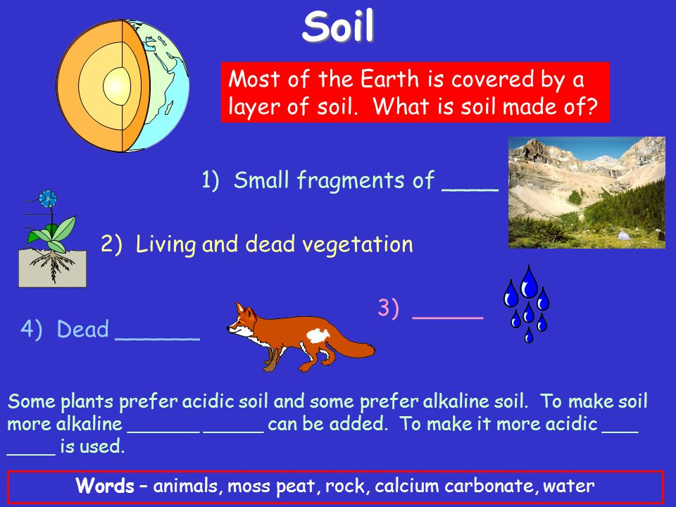 Soil Most of the Earth is covered by a layer of soil.