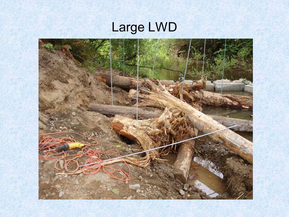 Large LWD