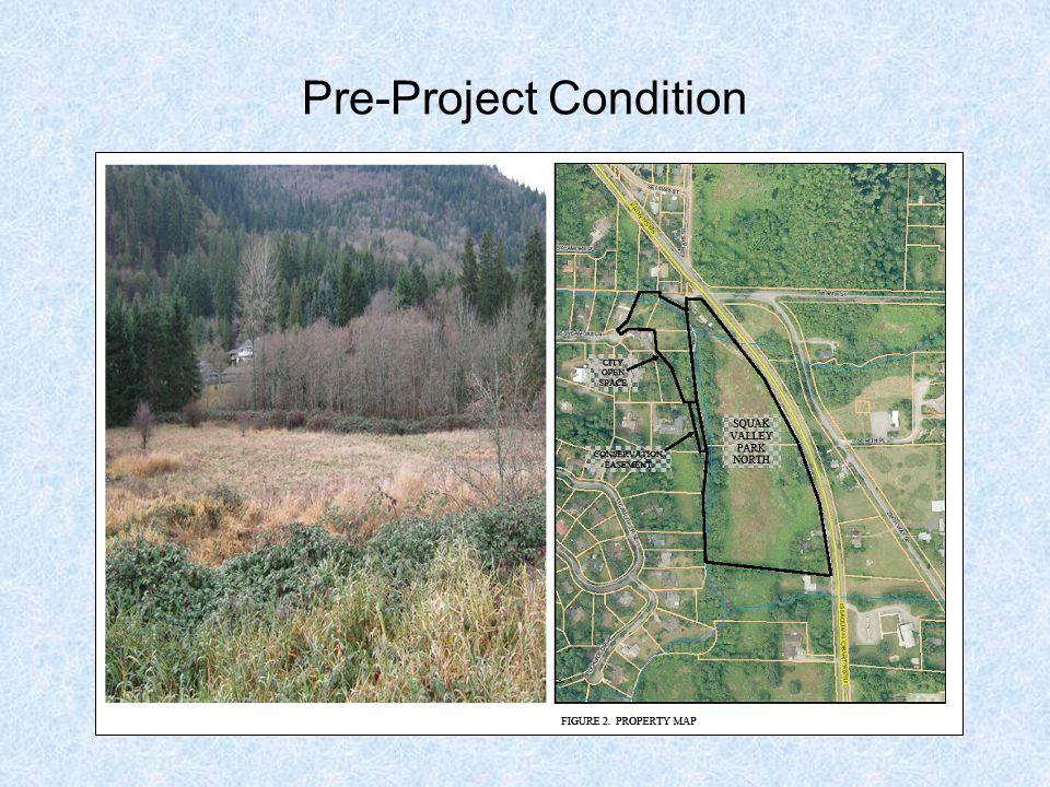 Pre-Project Condition