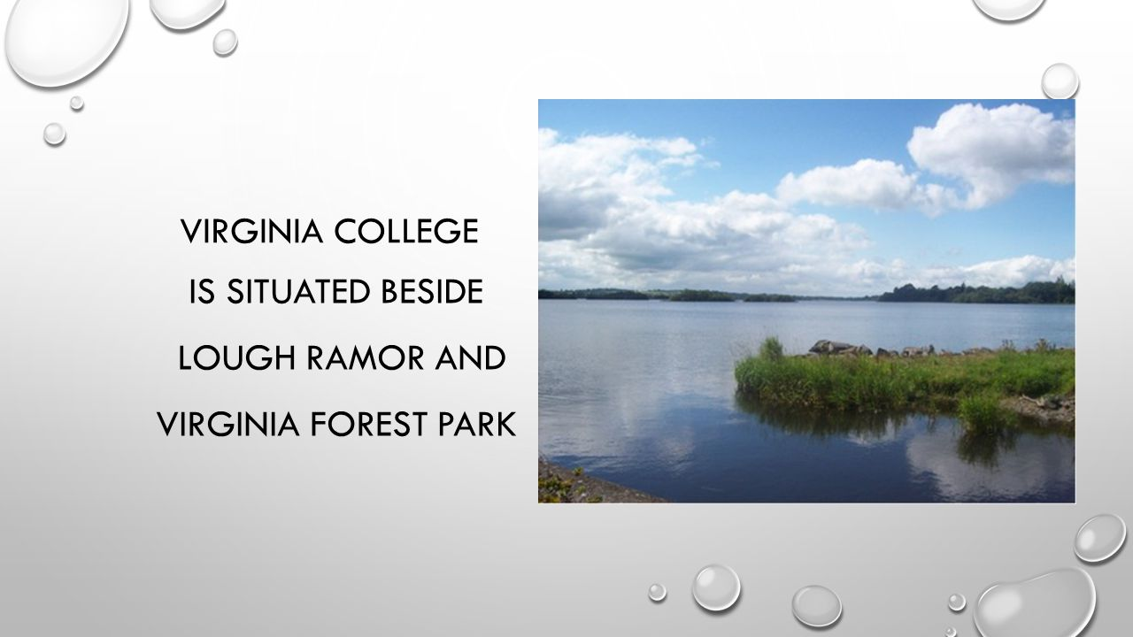 VIRGINIA COLLEGE IS SITUATED BESIDE LOUGH RAMOR AND VIRGINIA FOREST PARK