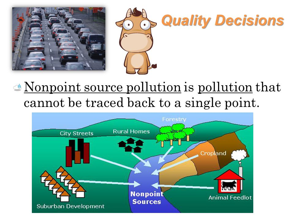 Quality Decisions The Environmental Protection Agency (EPA) developed Best Management Practices (BMP) to reduce or prevent nonpoint source pollution.