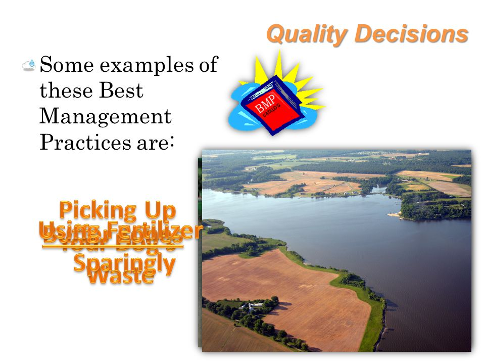 Quality Decisions Some examples of these Best Management Practices are: