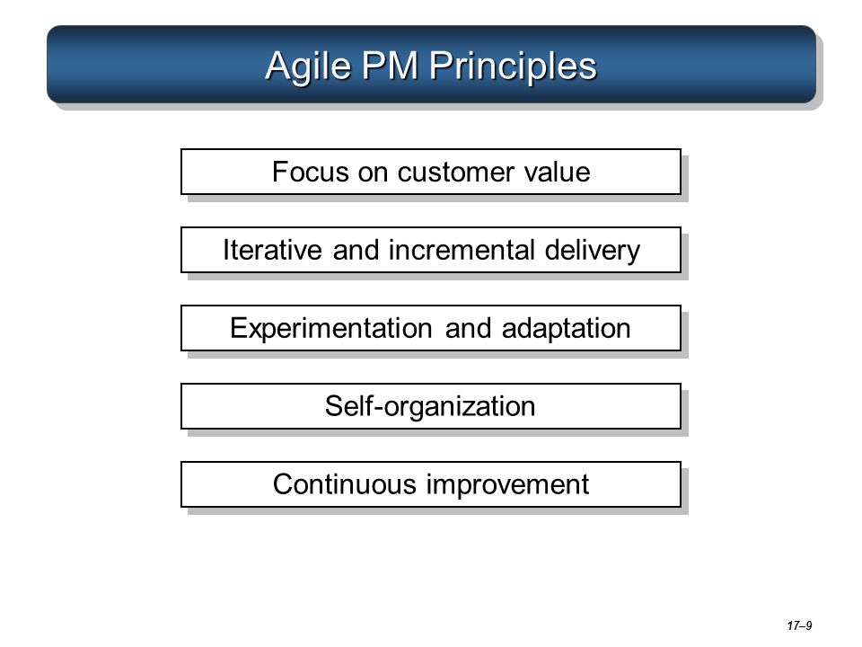 17–9 Agile PM Principles Focus on customer value Iterative and incremental delivery Experimentation and adaptation Self-organization Continuous improv