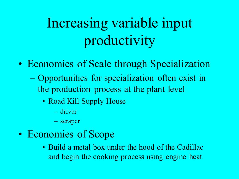 Increasing variable input productivity Economies of Scale through Specialization –Opportunities for specialization often exist in the production proce