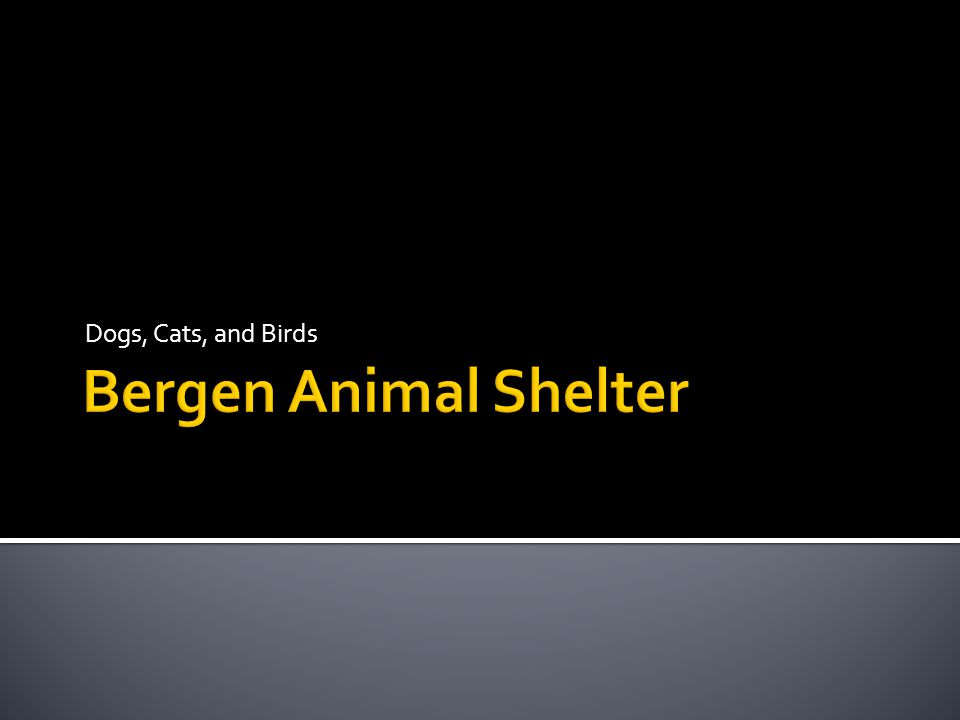  Adoption  Rescue  Public Health  Wildlife We are a county- operated shelter providing animal control.