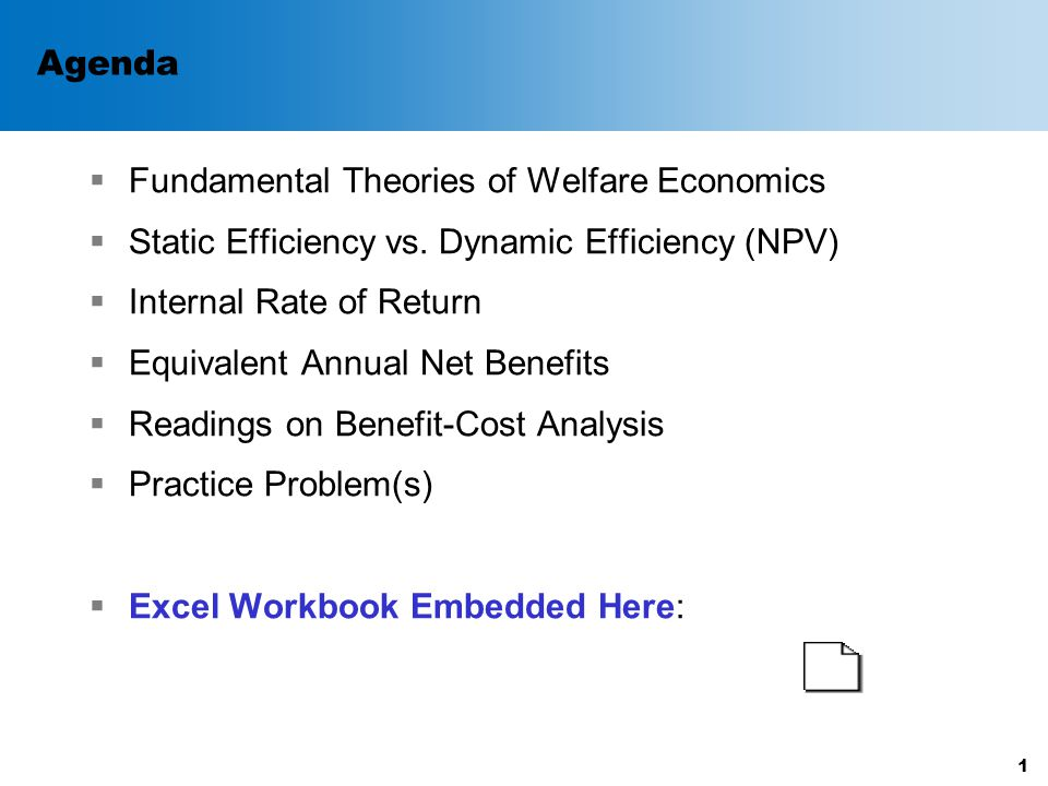 Steps for NPV Analysis  Pick a discount rate  Estimate the static net benefits of the project in each year for the entire life of the project.