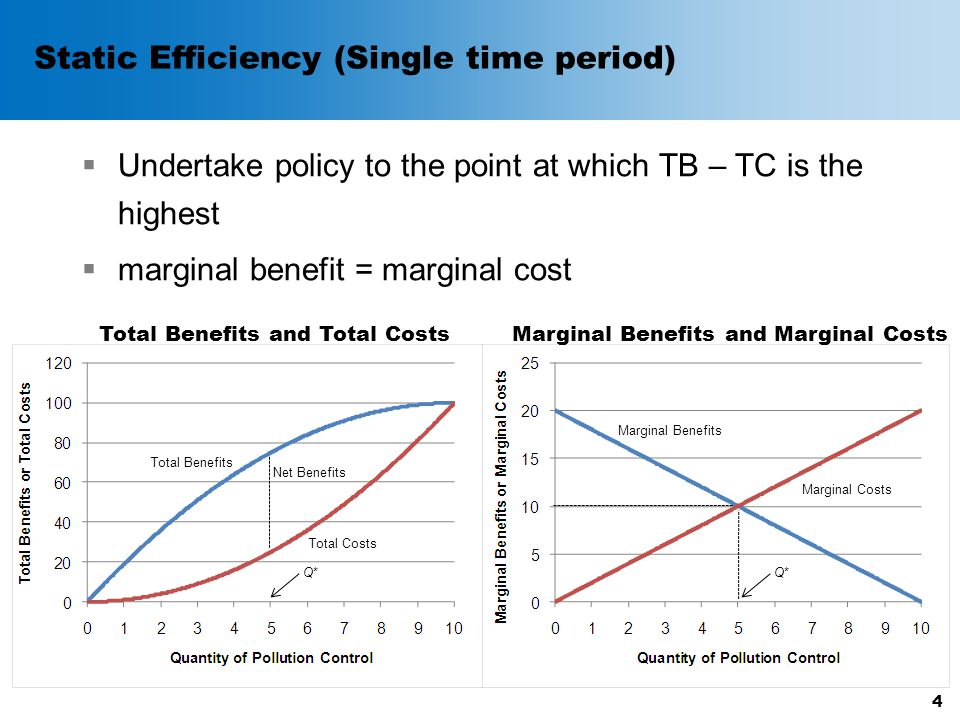 Static Efficiency (Single time period)  Undertake policy to the point at which TB – TC is the highest  marginal benefit = marginal cost 4 Total Benefits Total Costs Marginal Benefits Marginal Costs Net Benefits Q*Q* Total Benefits and Total CostsMarginal Benefits and Marginal Costs Q*Q*