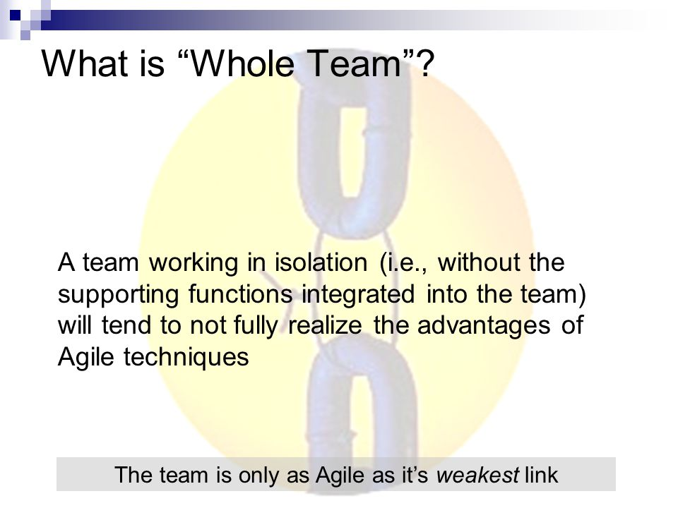 What is Whole Team .