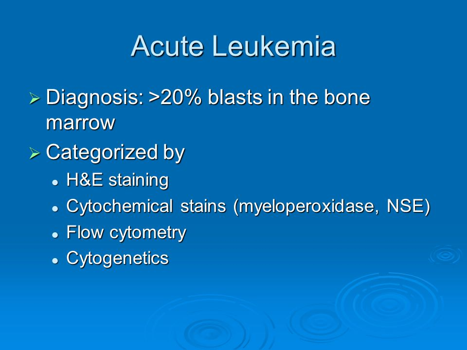 Acute Leukemia No evidence of maturation within blood or marrow