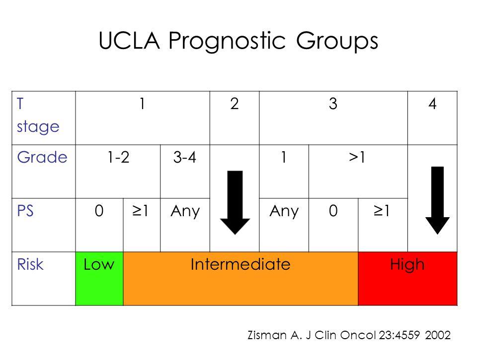 Neoadjuvant Approach Presurgical Bevacizumab (phase II) N= 46 RR= 10% Clinical benefit= 69.6% Median PFS= 6 months No major perioperative complications Jonash E.